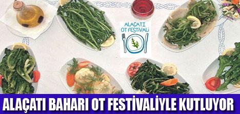 Bodrum ot Festivali Alaçati'da ot Festivali