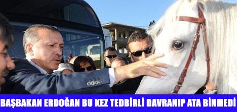 ERDOĞAN'I 100 ATLI CİRİTÇİ KARŞILADI