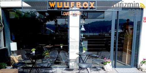 Wuufbox ile küçük dostlarınızı şımartın!