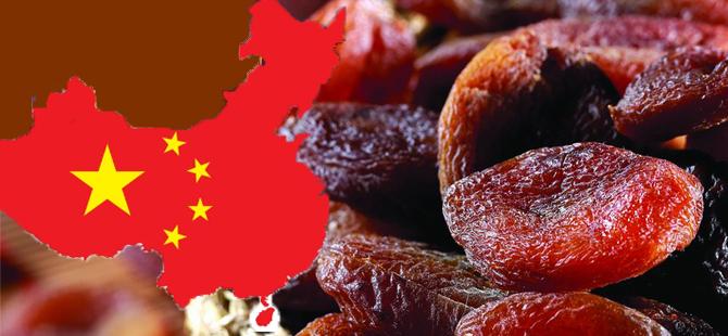 Çin'e gıda ihracatımız 3 yılda yüzde 100 arttırdık hedef büyüttük