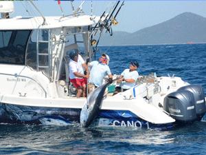Didim Açık Deniz Sportif Balık Avı Yarışması, D-Marin Ev Sahipliğinde Yapılıyor