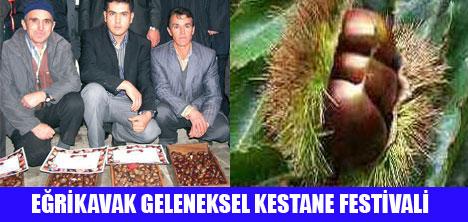 AYDIN'DA KESTANE FESTİVALİ