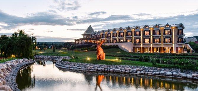 Üzümün Asmadan Kadehe Yolculuğu Hotel Caeli'de!
