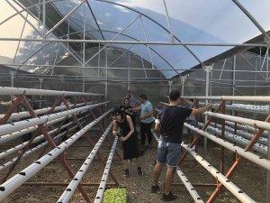 Topraksız tarımda üniversite-belediye iş birliği
