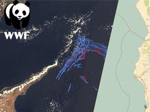 Petrol sızıntısı Akdeniz'de yaşamı tehdit ediyor