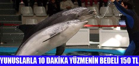 İSTANBUL'LULARIN YENİ EĞLENCESİ