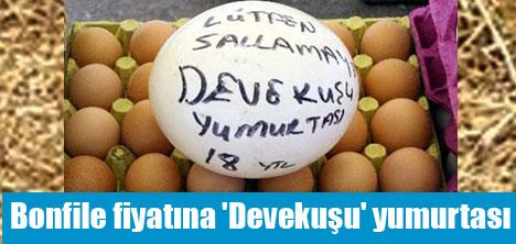 Devekuşu yumurtası Konya'da pazar tezgâhlarında 18 YTL'den satılıyor.