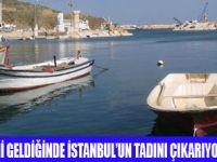 İSTANBUL'DA DENİZE NEREDE GİRİLİR