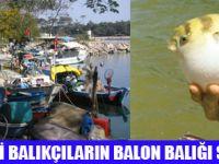 YA NASİPTE BALON BALIĞI BEREKETİ