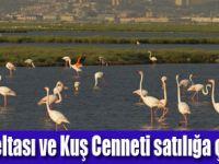 Gediz yaşamazsa İzmir'de yaşamaz