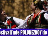 Vizesiz Polonya