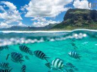 Yaz Mauritius'da yeniden başlıyor!