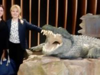 Emaar Akvaryum ve Sualtı Hayvanat Bahçesi açıldı