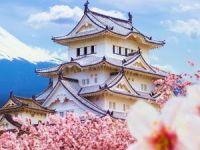 FEST Travel'in 3 farklı tarihteki Japonya programları, bahar aylarının en çok rağbet gören rotalarından olacak