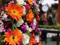 Floralfest, 9-10-11 Kasım'da ilk kez özel Floralfest Wedding konseptiyle İzmir Arena'da!!