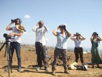 Avrupa Kuş Gözlem Günü'nde Türkiye'deki Kuş Gözlemciler 21 Farklı Noktada Buluşuyor