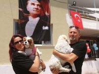 Hayvanseverlerin tatile çıktıklarında köpeklerini bırakabilecekleri artık bir otel var