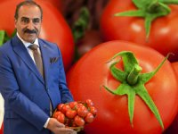 Türk domatesinin Rusya yolculuğu kaldığı yerden devam edecek