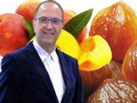 Bursa Gastronomi Turizmi Derneği Kuruldu