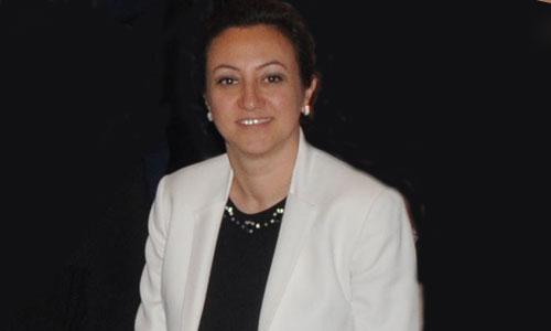 istanbul-kalkinma-ajansi-genel-sekreteri-ozgul-ozkan-yavuz.jpg