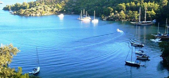 naviera-yachting-001.jpg